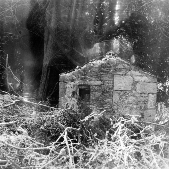 Sharon Harvey, 'Forest Hut', 2011.